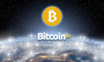 Bitcoin SV Year 1: The growing BSV ecosystem